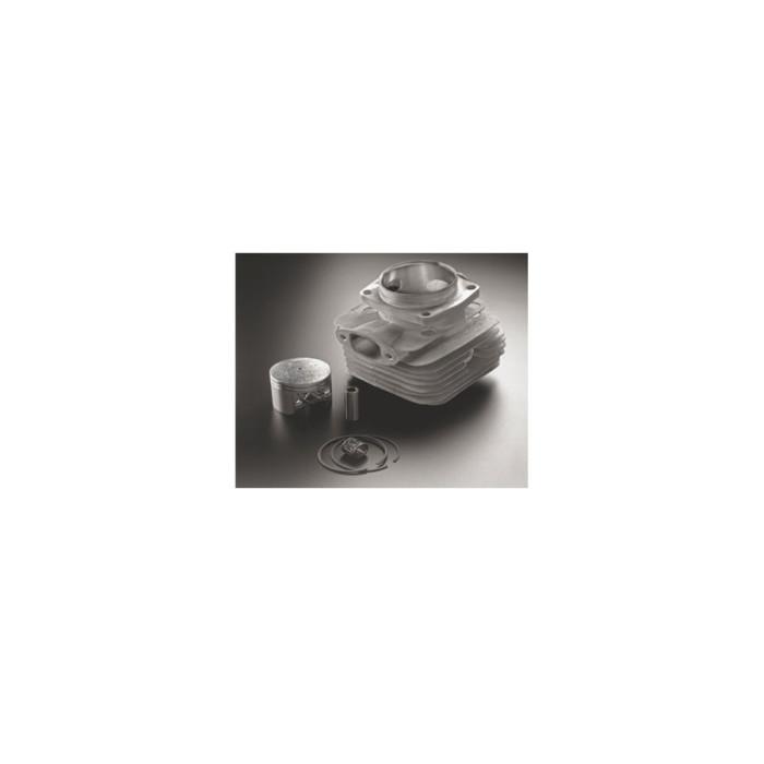 Kit de reparación Shindaiwa KIT 488P